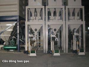 Picture of Cân đóng bao gạo